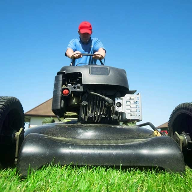 Easy Ways To Improve Your Lawn